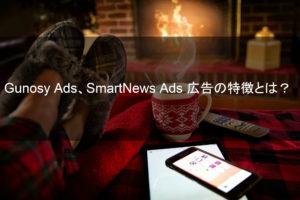 【通販事業者必見】Gunosy Ads、SmartNews Ads 広告の特徴とは?